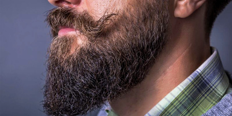 Beard Shampoo Beardburys
