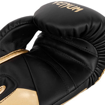 Petrosyan Elite 2.0 Boxing Gloves