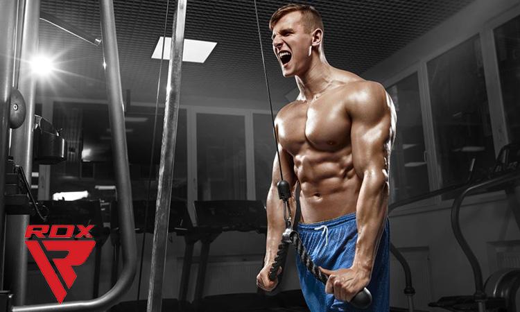 RDX Triceps Rope