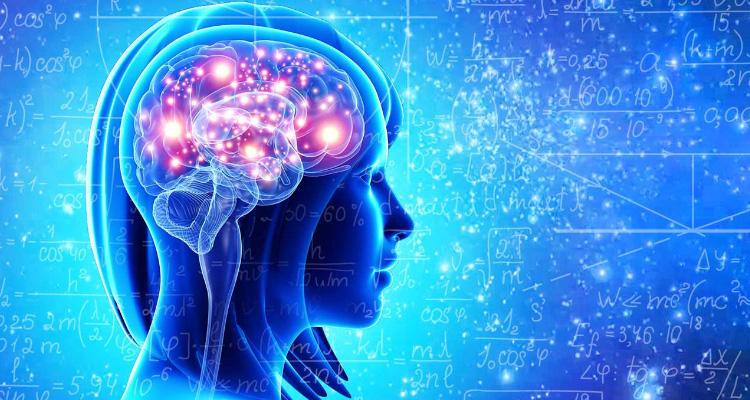 Brain PS