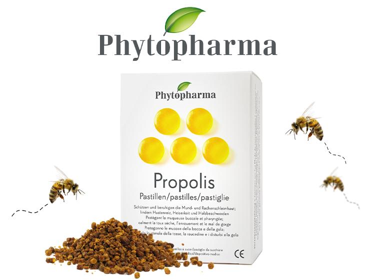 Propolis pastilles
