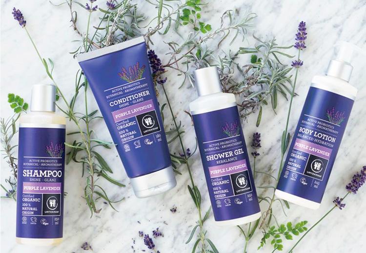 Shampoo Purple Lavender