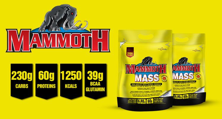 Mammoth Mass Interractive Nutrition