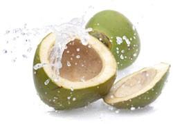Bio Coconut Water Sport Formula