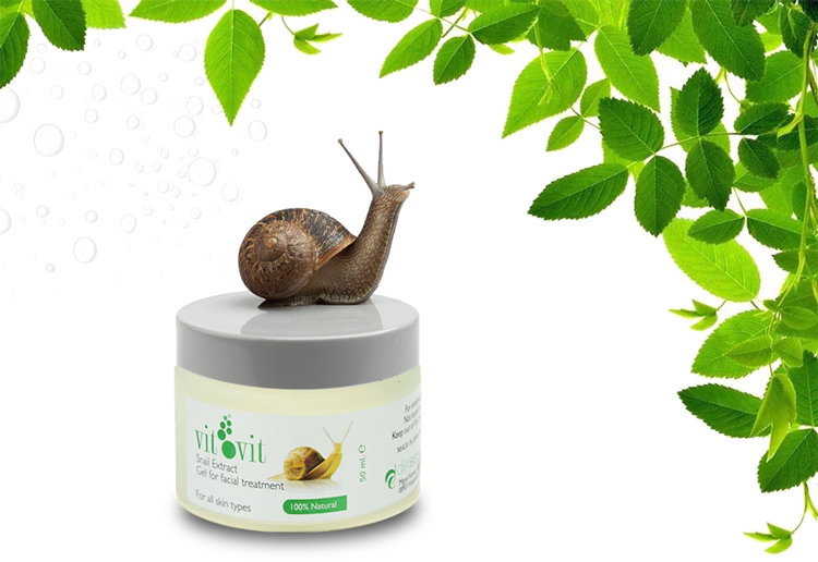 VitVit Snail Cream