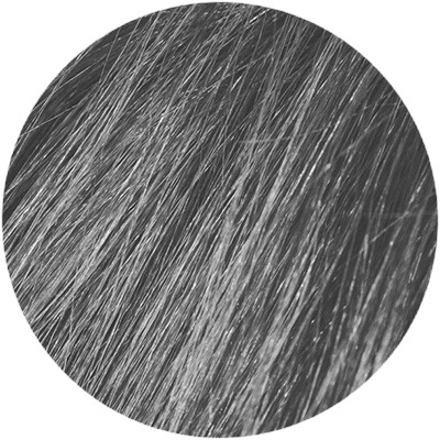 Color Shampoo 9G Grey